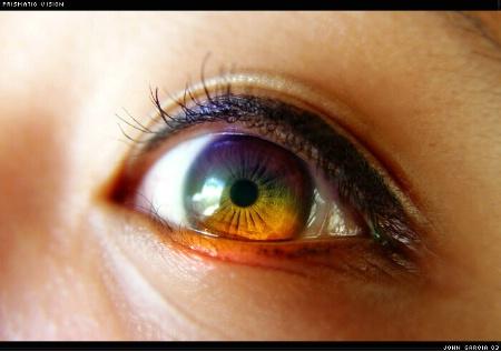Prismatic Vision