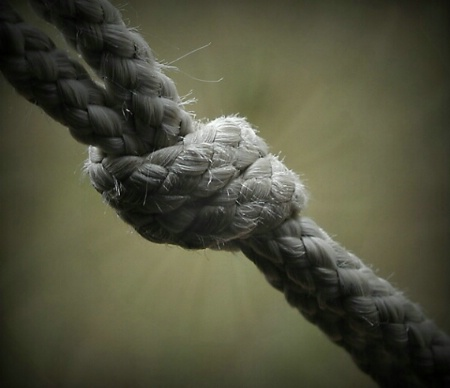tied knot!
