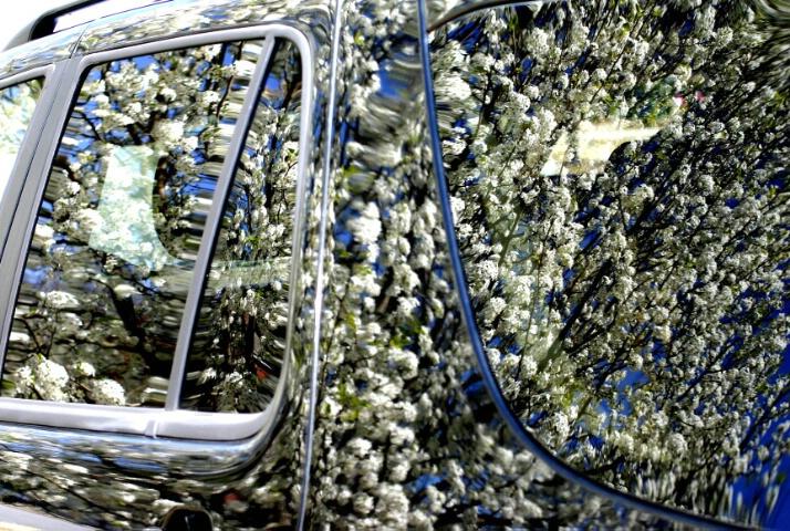 Flower Powered Car