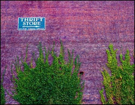 Thrift Store ---------->