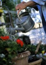 Gardening III