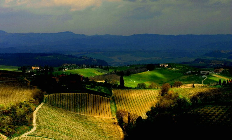 Under a Tuscan Sun...and Clouds