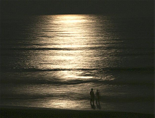 Moonlight Couple