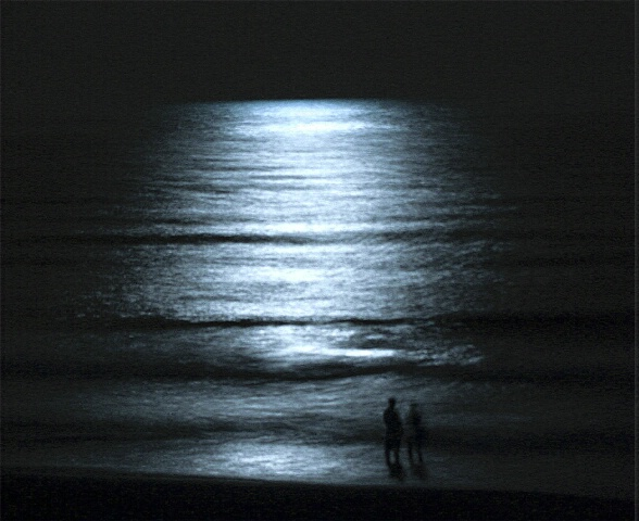 Moonlight Couple 2