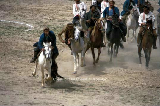 BuzKashi, horse running toward me - ID: 355763 © Cheryl  A. Moseley