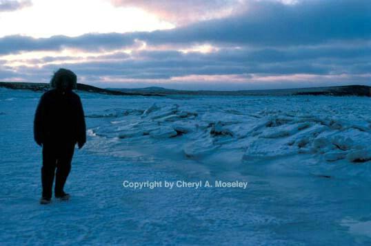 Ocean shore freeze - ID: 355789 © Cheryl  A. Moseley