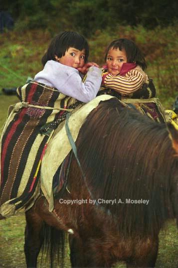 Papooses on horse, Bhutan 12-4.jpg - ID: 362418 © Cheryl  A. Moseley