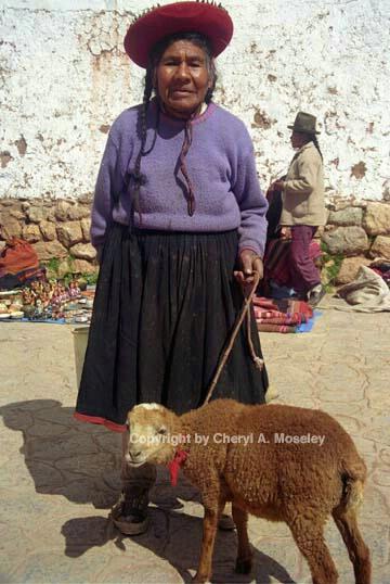 Elderly woman & lamb, 6-36 - ID: 362500 © Cheryl  A. Moseley