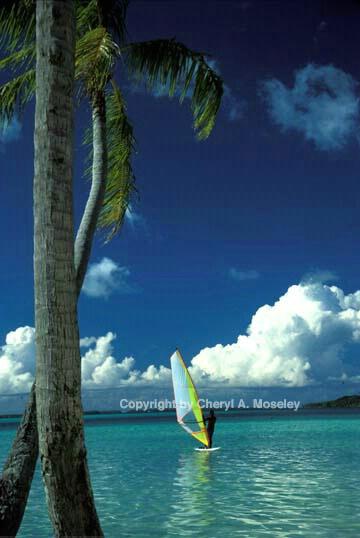 Tahiti windsurfer - ID: 362525 © Cheryl  A. Moseley
