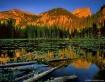 Alpine Lily Pond
