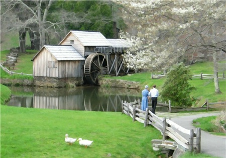 Spring Time at the Mill