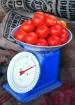 tomato2_addtl20