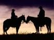 horses in silhoue...