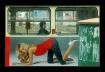 Tram of desires