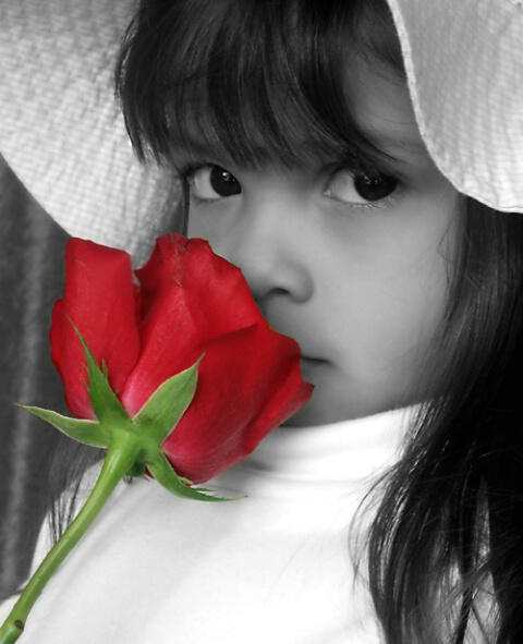 Hiding behind the Red Rose