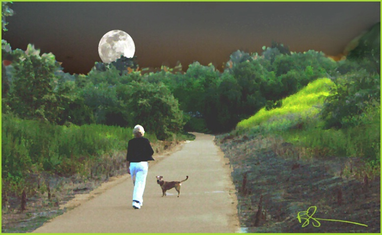 ~Moonwalk~