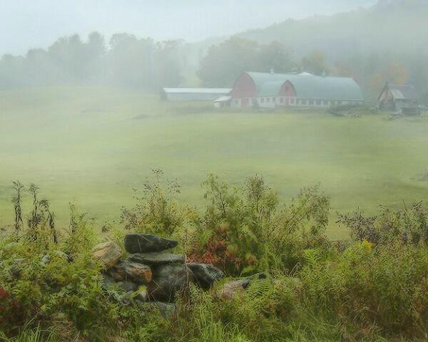 ...foggy, rainy days....