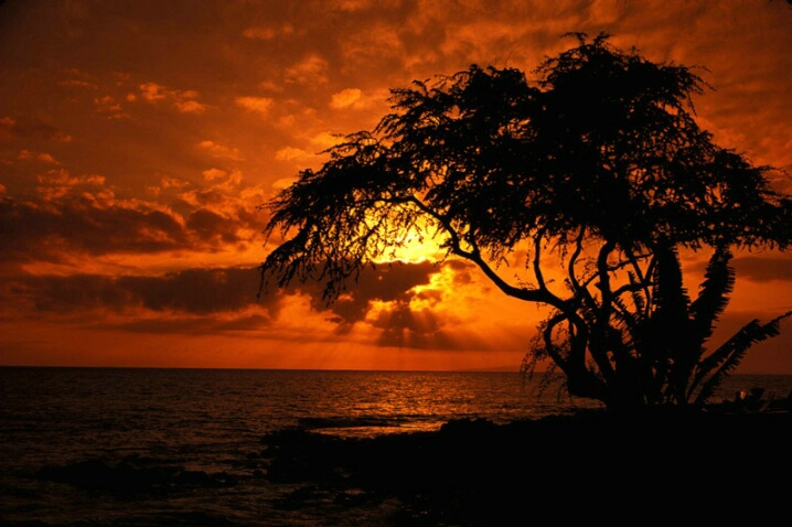 Wailea Sunset - ID: 375856 © John T. Sakai