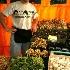 © John T. Sakai PhotoID# 375874: Vegetable Vendor at the Marche