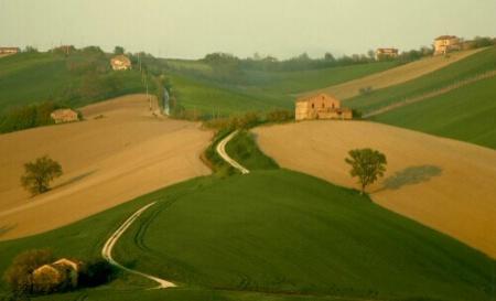 Tuscany landscape 1
