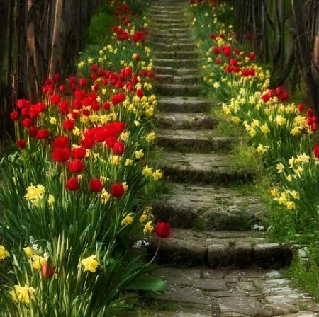 SpringStairs