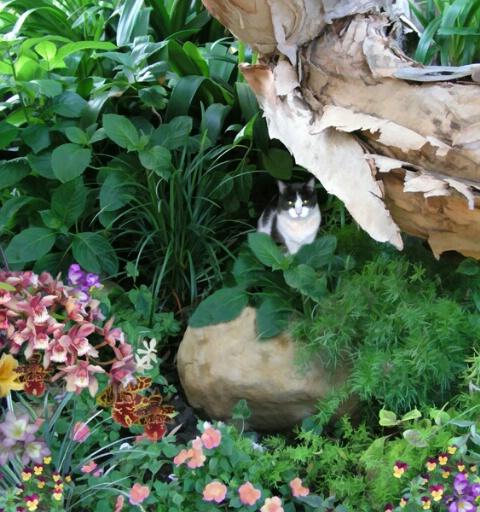 beau's secret garden