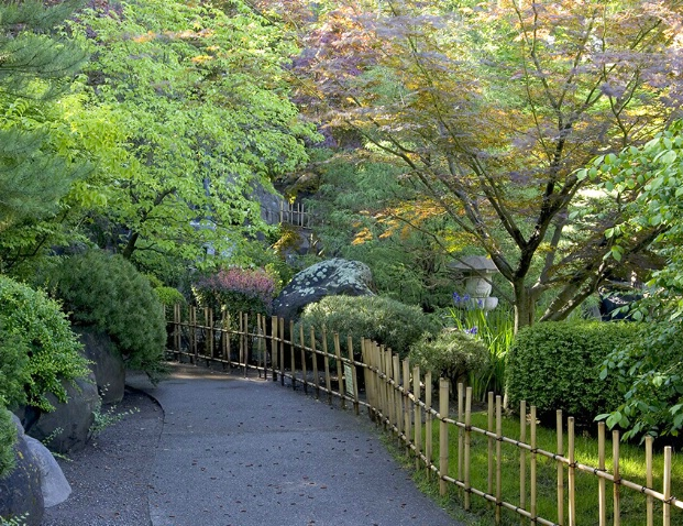 Bamboo Trail - ID: 409122 © Jim Kinnunen