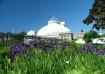 Allan Gardens, To...