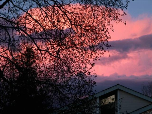 Holiday Sunset