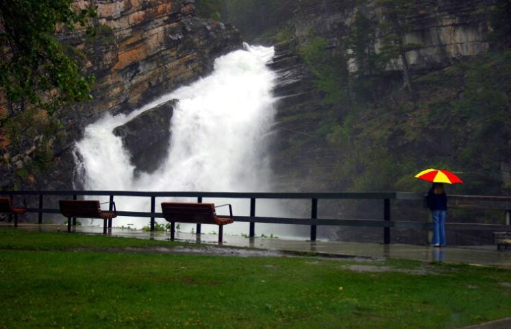 Standing in the rain - ID: 421815 © ashley nicholas