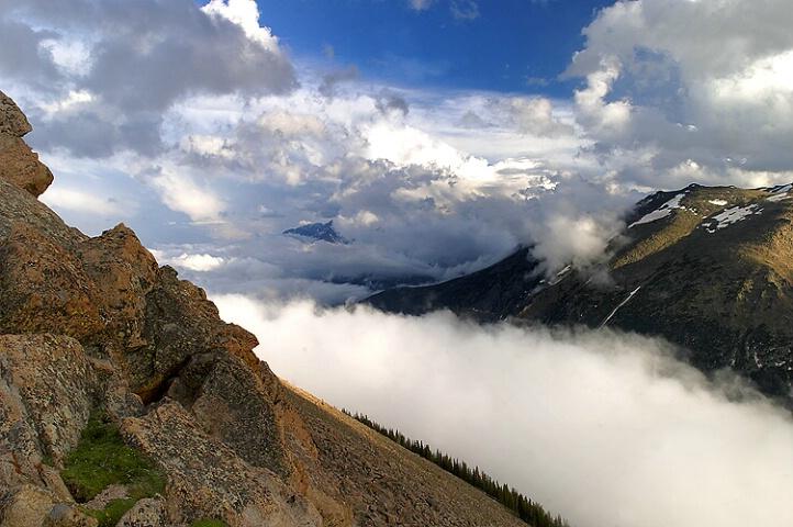 Forest Canyon Atmospherics