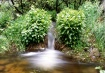 Small Stream Feed...