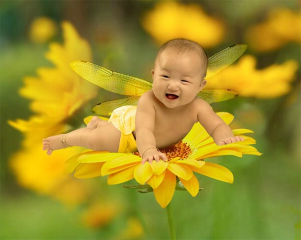 Baby on yellow flower