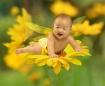 Baby on yellow fl...