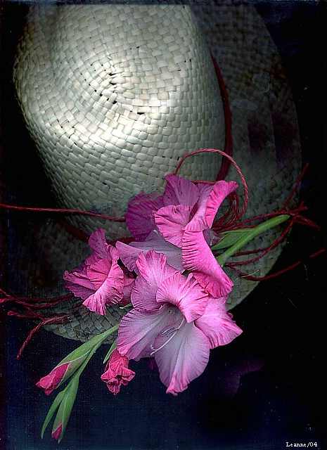 Hat and Glads