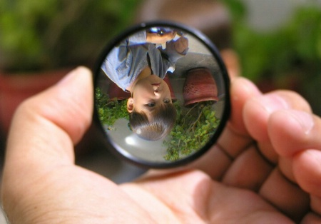 In The Magnifier glass