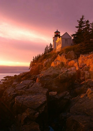 Sunset At Bass Harbor