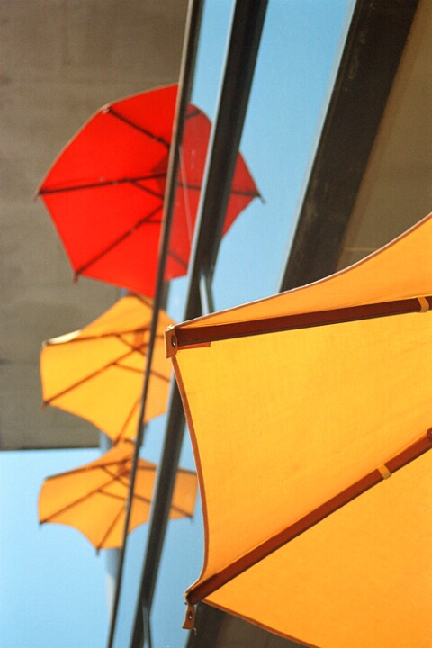Umbrella Reflection