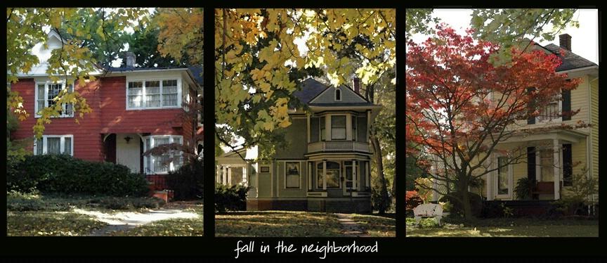 fall in the neighborhood