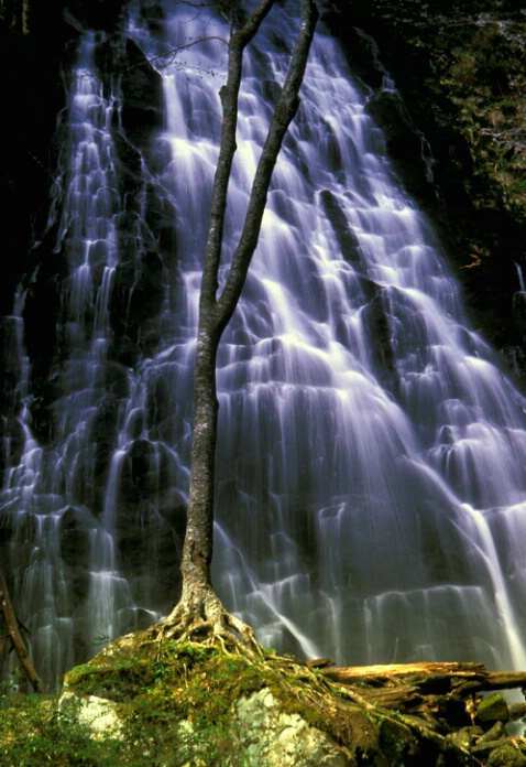 Crabtree Falls, Blue Ridge Prky,NC - ID: 586745 © Bob l. Peterson