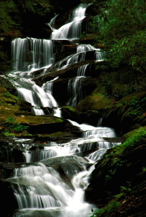 Roaring Fork Falls, NC - ID: 586774 © Bob l. Peterson