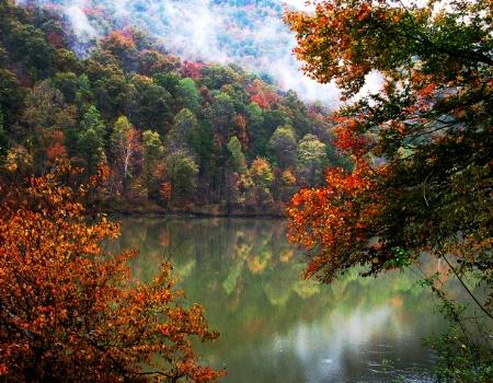 Samhain Reflections