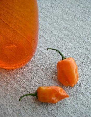 Vase & Peppers II