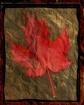 The Last Maple Le...