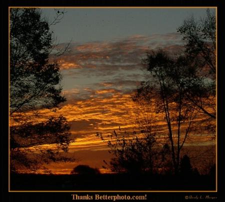 Thanks Better Photo.com!