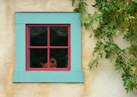 Window with a goose