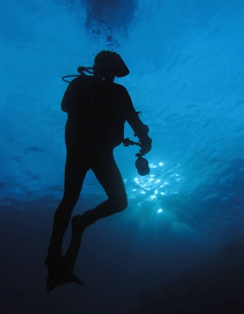 An underwater photographer