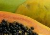 papaya landscape