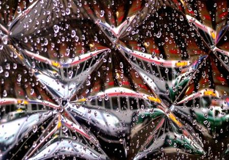 Bus in the Rain