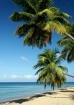 Some beach ...Som...